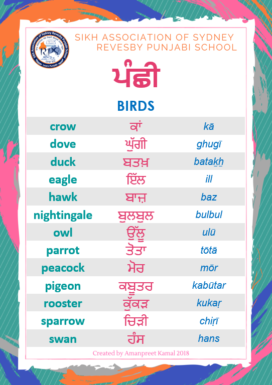 Birds in Punjabi ਪੰਛੀ